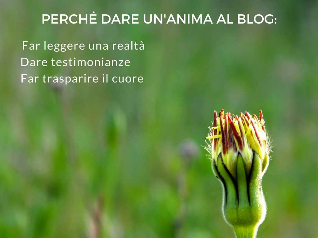 dare un'anima al blog